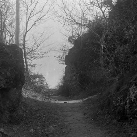 Scorcio di un angolo del monte di Portofino 1912